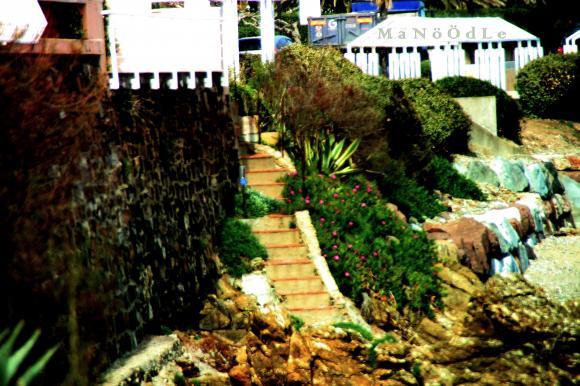 http://abricot-sponge.cowblog.fr/images/images2/IMG1551.jpg