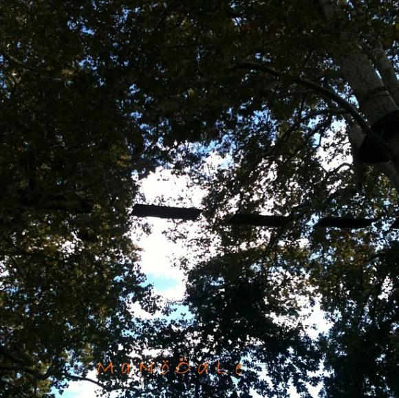 http://abricot-sponge.cowblog.fr/images/images4/70b7b708b4ef43ab827b2e37912ecdff7.jpg