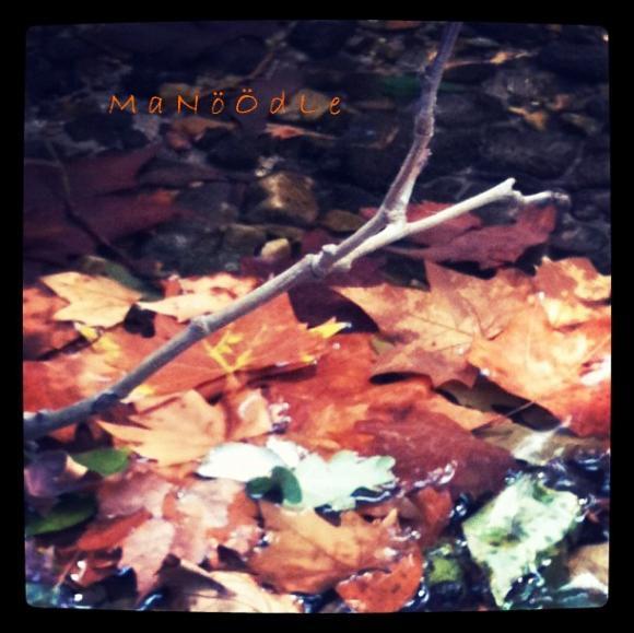 http://abricot-sponge.cowblog.fr/images/images4/c32e39b4ae0c4e109bcfbb91fea447d27.jpg
